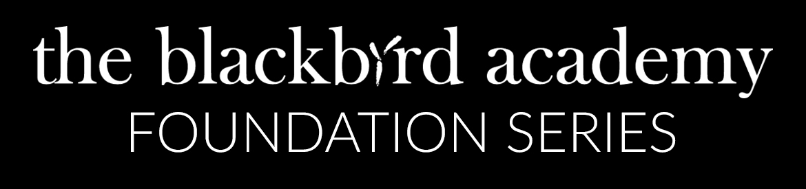 The Blackbird Academy Foundation Series