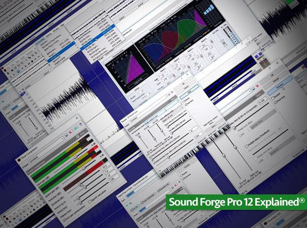 Sound Forge Pro 12 Explained