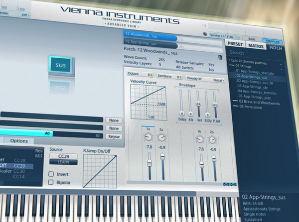 Vienna Ensemble Pro 5 Explained