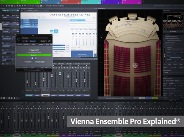Vienna Ensemble Pro Explained