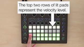 The Velocity Button