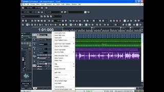 Basic Step Recording