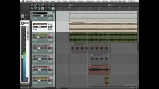 Bass Synths