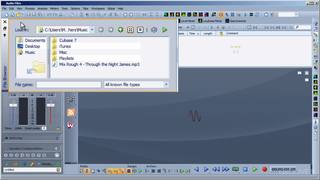 File Browser Window